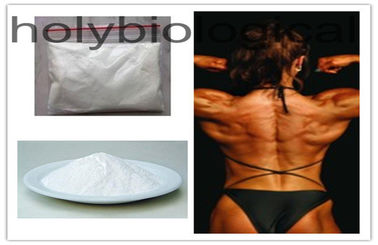4-Chlorodehydromethyltestosterone Steroid Powder Oral Turinabol for Muscular Endurance Gain
